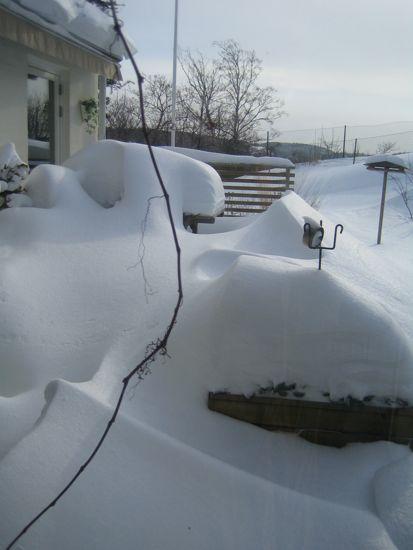 Snön låg metertjock i hela trädgården från december till april.