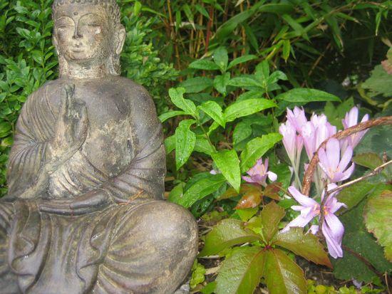 Statyn är en födelsedagspresent från mina föräldrar. Den står framför en ståtlig rugge av gulstammig bambu, som också den är en gåva från mor och far.